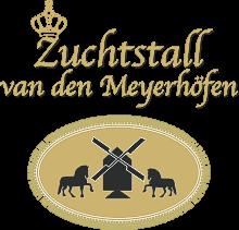 Friesenpferdezucht Bothmer