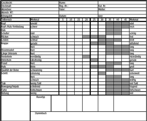 Linearer Scorebogen